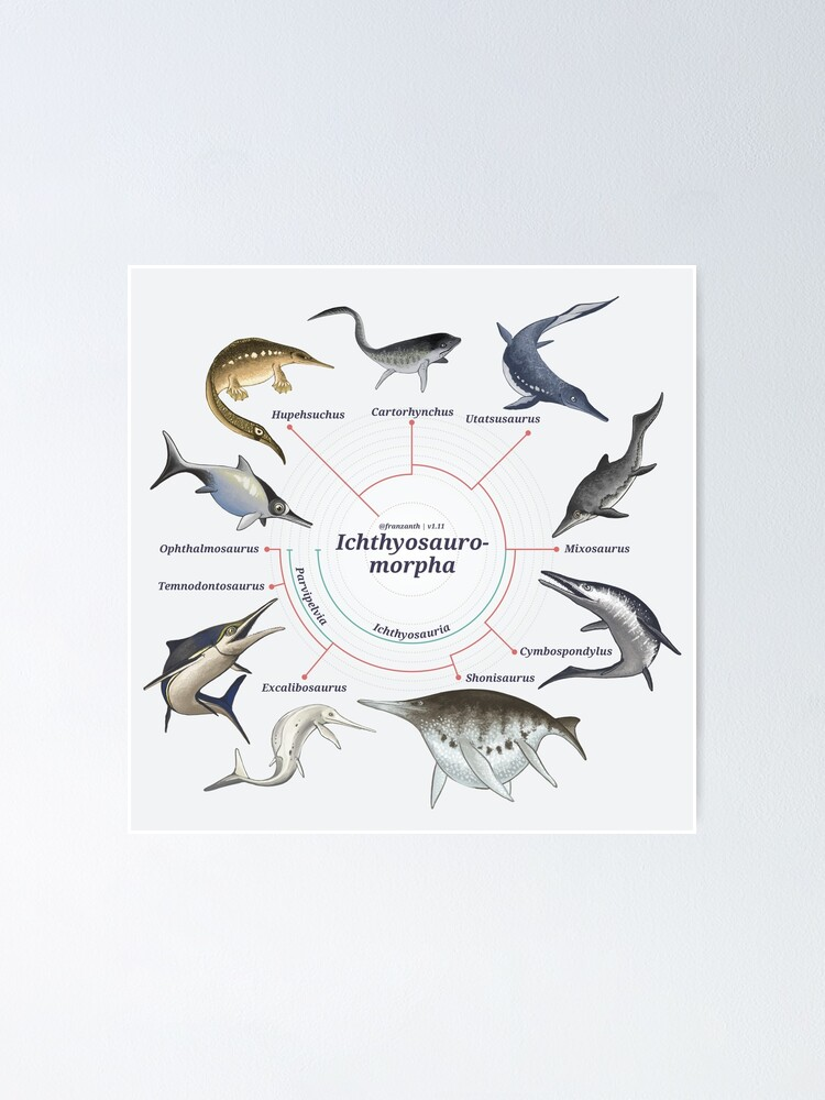 Alternate view of Ichthyosauromorpha: The Cladogram Poster