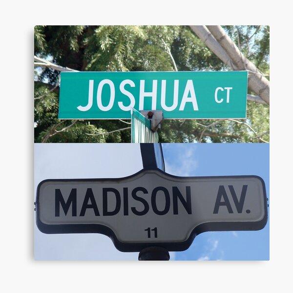 Madison and Joshua  Metal Print