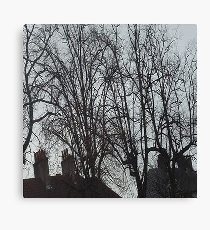 Tall Tree Rooftops Canvas Print