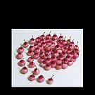 Cute exotic fruits pattern by Deepthi  Horagoda