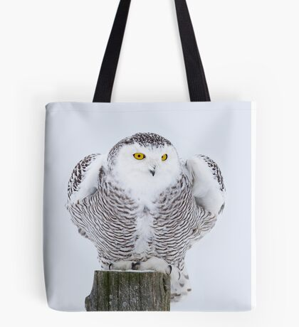 Perch - Snowy Owl Tote Bag