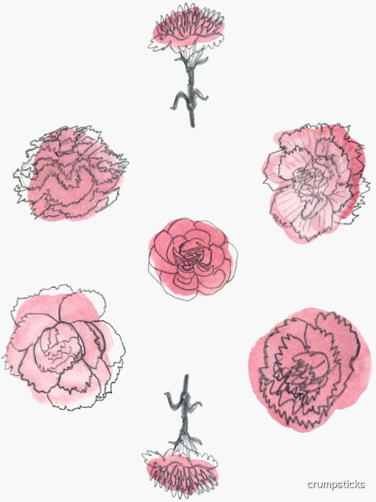 Pink Carnation Pattern by crumpsticks