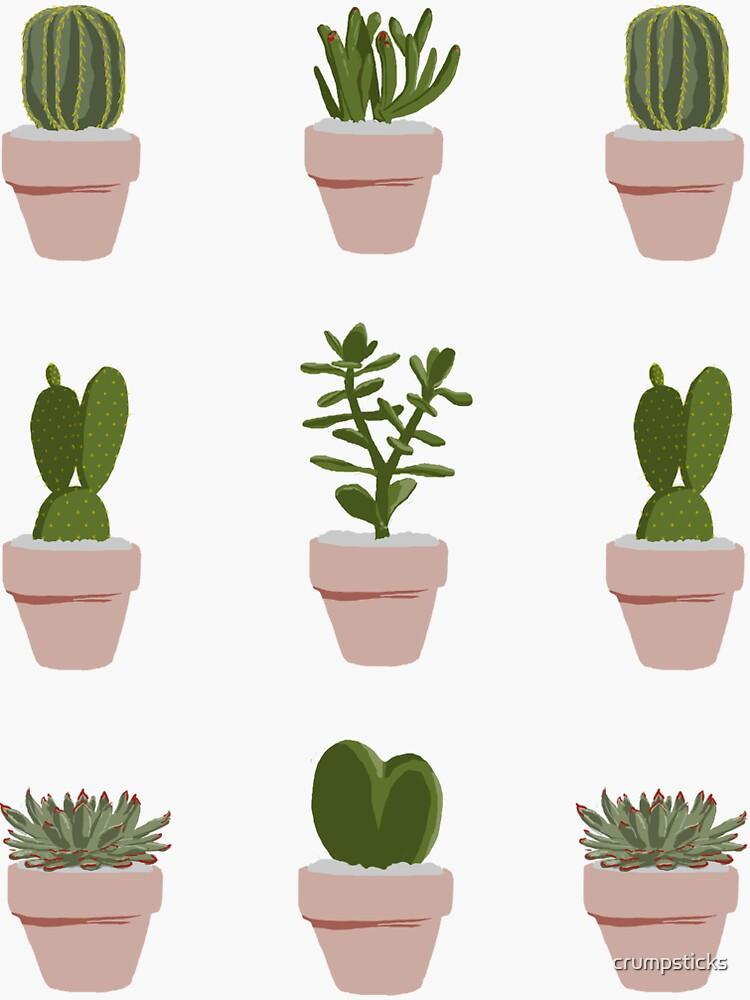 Cacti & Succulent by crumpsticks