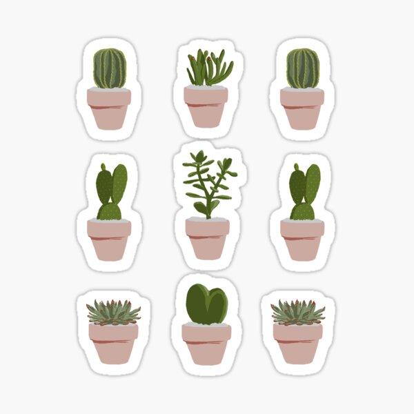 Cacti & Succulent Sticker
