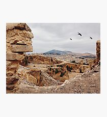 Three Birds Over Landfill in Morocco Photographic Print