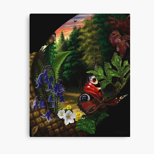 Forest in the Spring Canvas Print