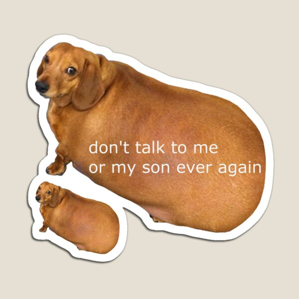 Don't talk to me or my son ever again - geek Magnet