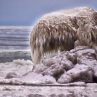 Sculpted By Nature - Erie, PA by Kathy Weaver
