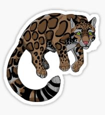 Clouded Leopard Sticker