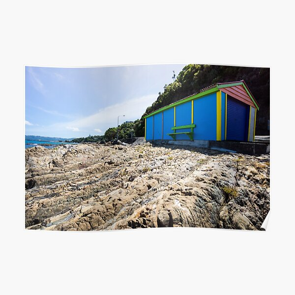 Lone boatshed. Poster