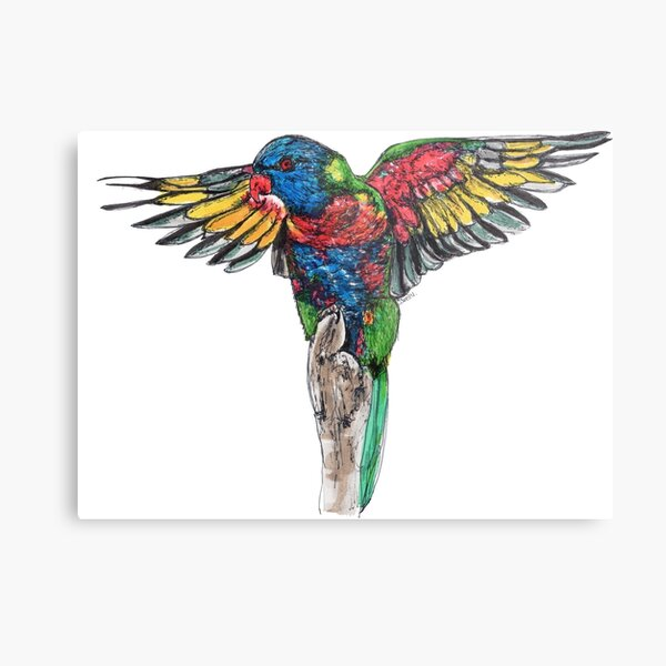 Delilah the Rainbow Lorikeet Metal Print