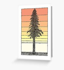 Coastal Redwood Sunset Sketch Greeting Card