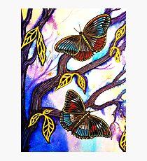 On Golden Wings - Butterflies Photographic Print
