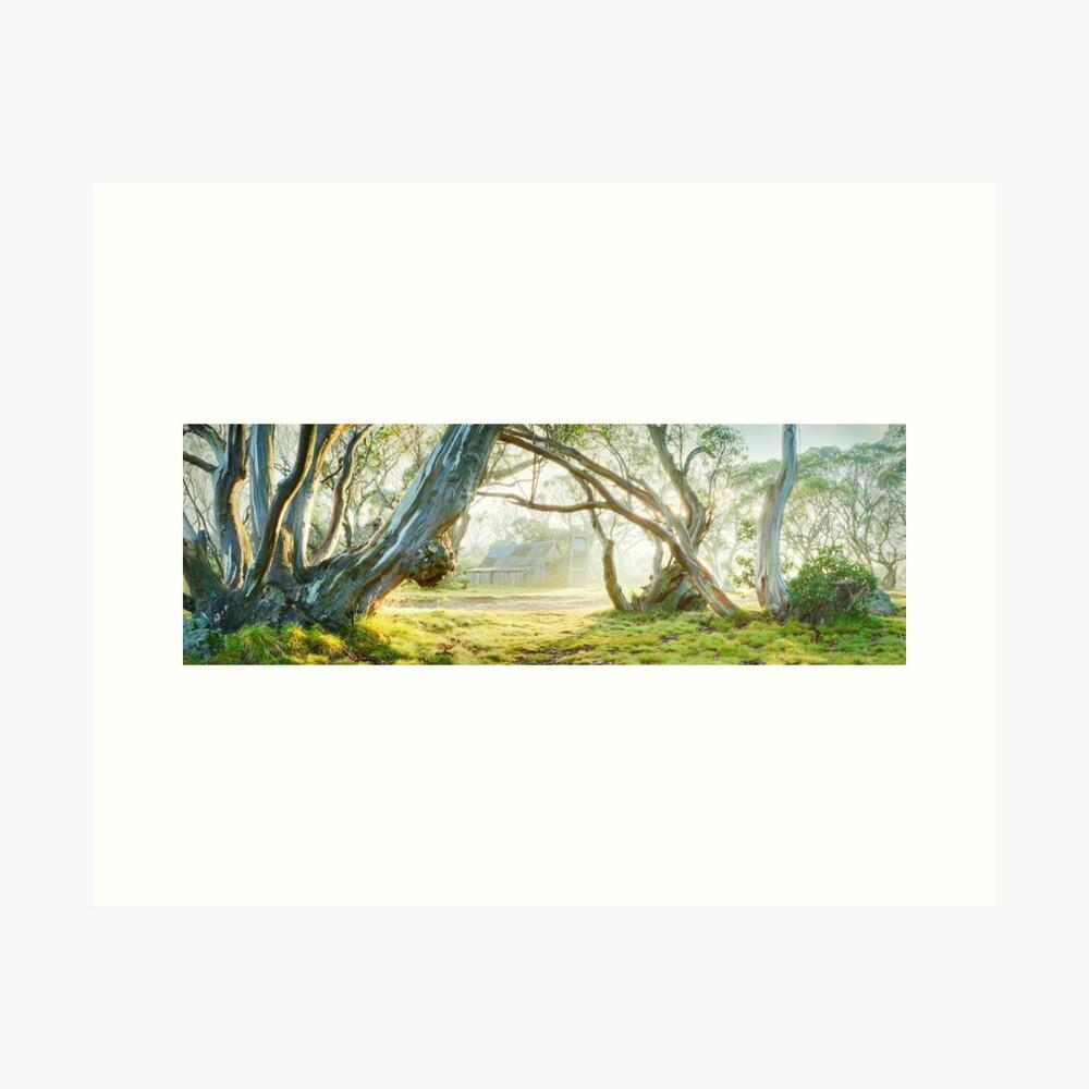 Foggy Wallace Hut, Falls Creek, Victoria, Australia Art Print