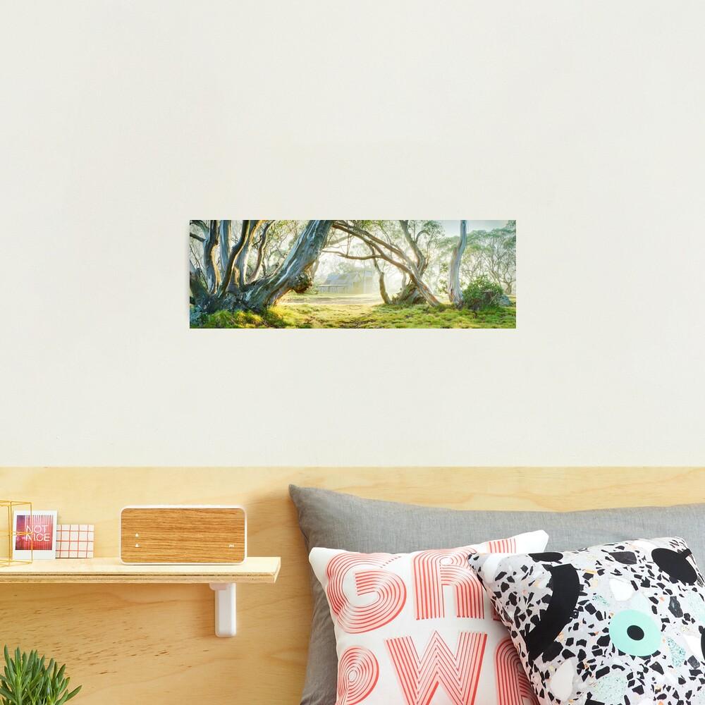 Foggy Wallace Hut, Falls Creek, Victoria, Australia Photographic Print