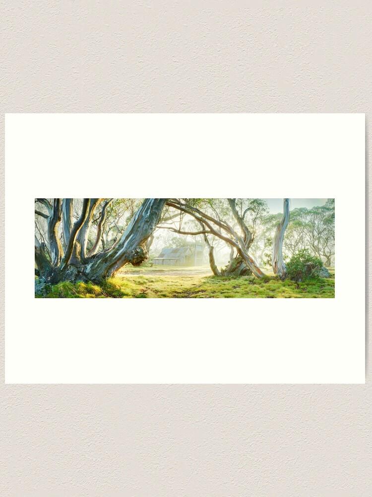 Alternate view of Foggy Wallace Hut, Falls Creek, Victoria, Australia Art Print