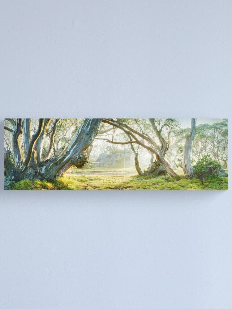 Alternate view of Foggy Wallace Hut, Falls Creek, Victoria, Australia Canvas Print