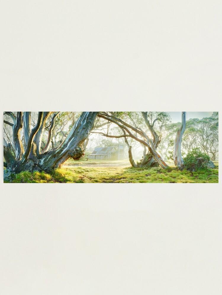 Alternate view of Foggy Wallace Hut, Falls Creek, Victoria, Australia Photographic Print