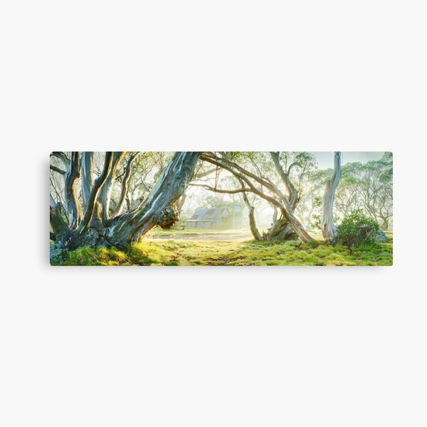 Foggy Wallace Hut, Falls Creek, Victoria, Australia Canvas Print