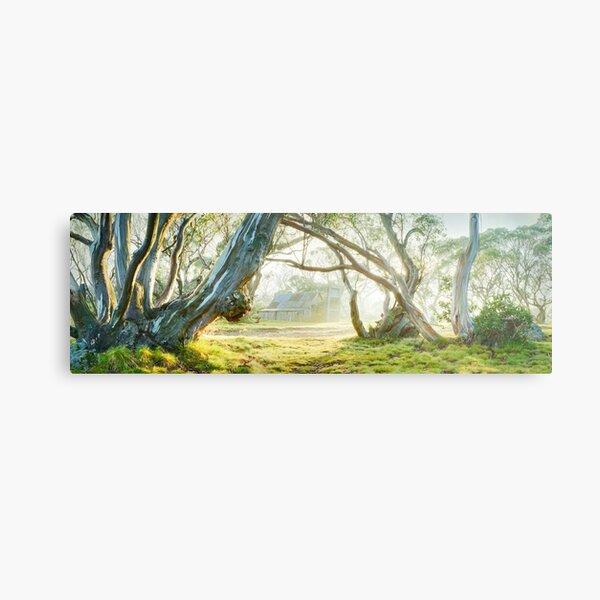 Foggy Wallace Hut, Falls Creek, Victoria, Australia Metal Print