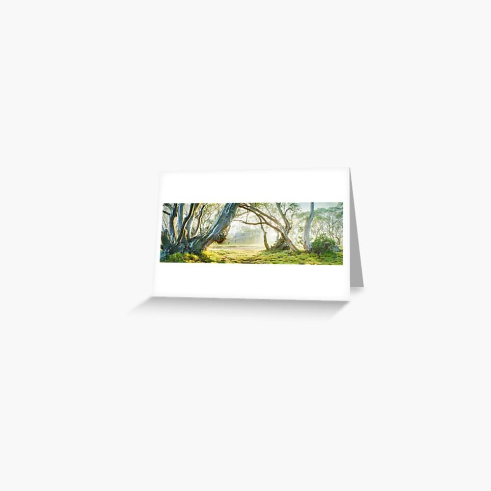 Foggy Wallace Hut, Falls Creek, Victoria, Australia Greeting Card