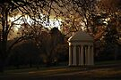 Winter Afternoon in Fitzroy Gardens, Melbourne, Australia by haymelter
