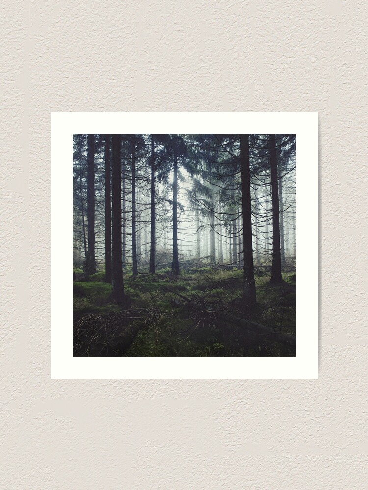Alternate view of Through The Trees Art Print