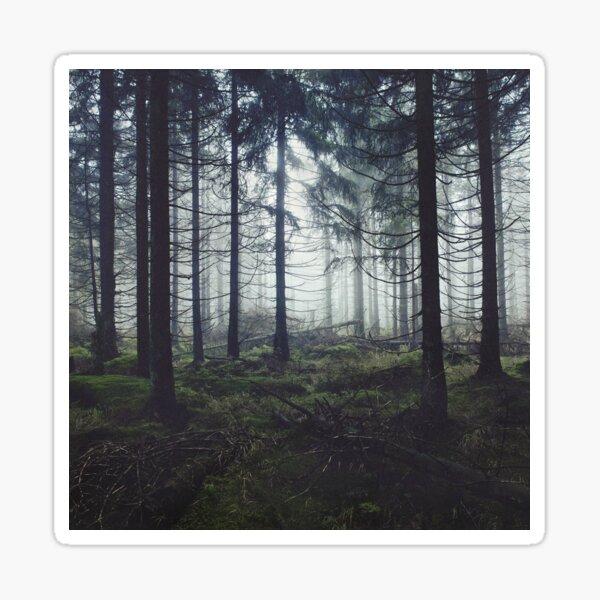 Through The Trees Sticker