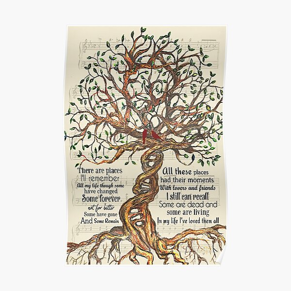 """Letras de In My Life - Tree And Cardinal Bird Gift Who Love """"In My Life"""" Póster"""