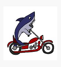 Cool Funny Blue Shark on Red Motorcycle Photographic Print