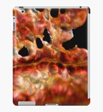 Fleshy Slice iPad Case/Skin