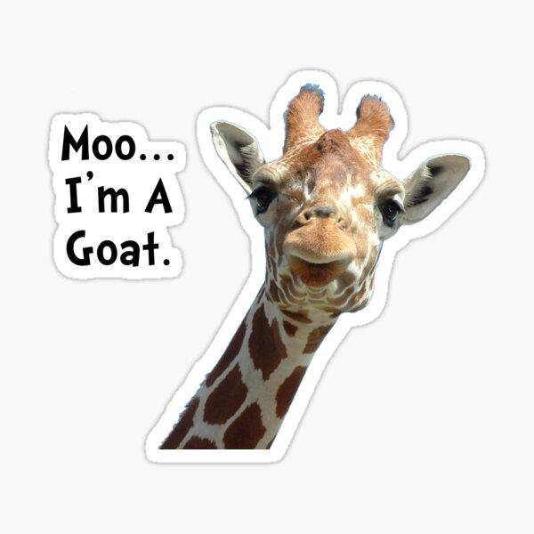 Moo Giraffe Goat Sticker