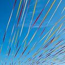 ribbons by Ian Robertson