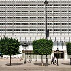 People In Town - Tunis' Bourgiba avenue by Yannick Verkindere
