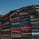 books by Ian Robertson
