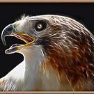 Eagle Eye by glink