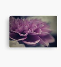 flower close up nine Canvas Print
