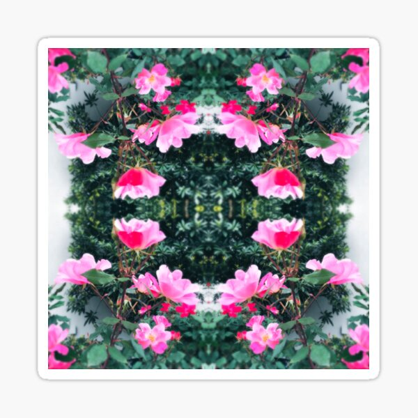 Candy Coated Roses Sticker