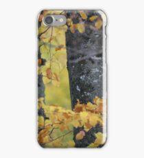 I do love Autumn . Anno Domini  2012 . Doctor Faustus. iPhone Case/Skin