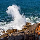 Granite Island Victor Harbor by Gavin Kerslake