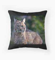 Blue Eye Bobcat Throw Pillow
