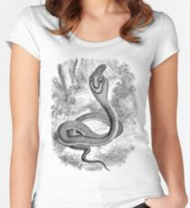 Vintage Snake Hooded Serpent Illustration Retro 1800s Black and White Snakes Reptile Image Women's Fitted Scoop T-Shirt