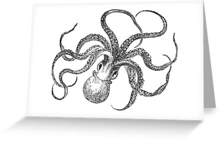 Vintage octopus illustration retro 1800s black and white image vintage octopus illustration retro 1800s black and white image by silverspiral m4hsunfo