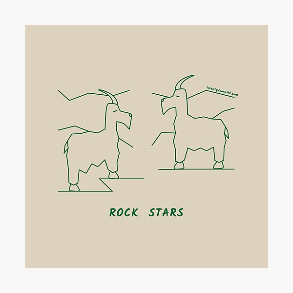 Rock Stars | Twenty Four Wild Photographic Print