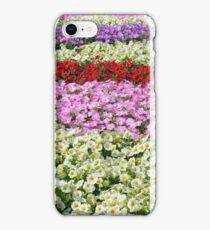 Beautiful colorful stripes of flowers. iPhone Case/Skin