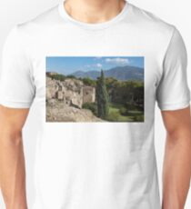 A Fine Italian Afternoon - Ancient Pompeii Ruins From a Verdant Park T-Shirt