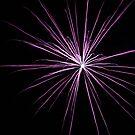 fireworks 19/3/16 by david gilliver