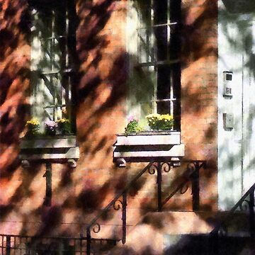 Manhattan NY - Window Boxes Greenwich Village by SudaP0408