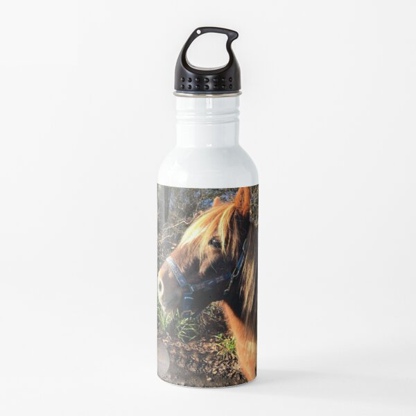 Pumpkin's Collection Water Bottle