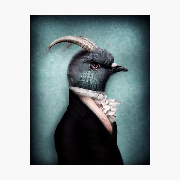 Lord Percival Peck  Photographic Print